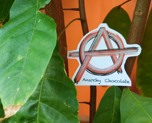 Growing Anarchy Chocolate